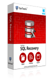 SQL Data Recovery Box