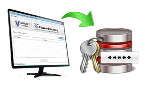SQL Password Reset Box Image